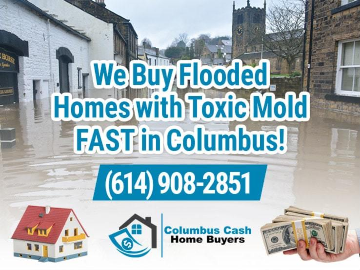 columbus water damage and mold